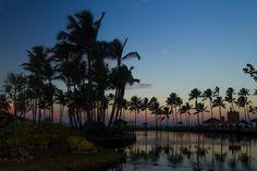 Ilhéus, Bahia, Brasil ph @fotovitor   #paradise #bahia #brasil #trip