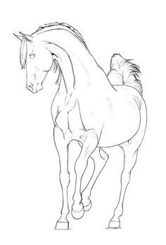 Arabian stallion lineart by akuinnen24