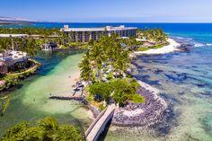 An island oasis