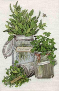 Flour-Sack-Towel-Herbs-Design-by-Mary-Lake-Thompson