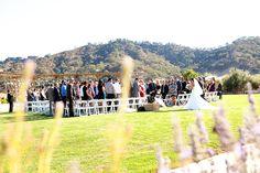 Winery wedding Clos la Chance  Danielle Gillett Photography