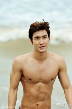 Siwon   Fall In Love with You Again