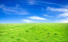 緑の芝生、青空 壁紙プレビュー