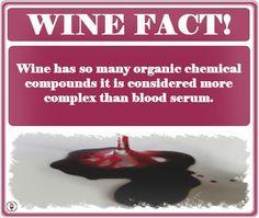 #Wine vs. Blood.