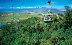 The highest gondola ride I've ever ridden... 1.5 hours to the top! Over the Kuranda rainforest, and back down by steam train. (Cairns, Australia)