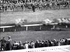 PHARLAP, 10 minutes of genuine footage from the 1930s. #horses