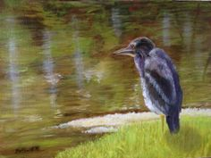 "Yellow Crowned Night Heron (immature) 2016, oil on paper/panel, 9"" x 12"" (from a photo I took at Black Point Wildlife Refuge last year)"
