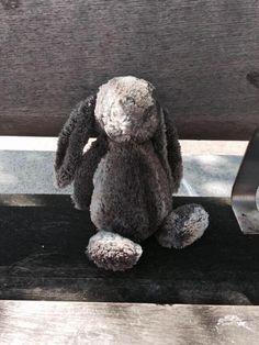 Bunny found in Croydon, he's sat on bench opposite KFC https://twitter.com/Lorna_Wall/status/617393559319277568