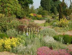 Die Beth Chatto Gardens - Gravel Garden