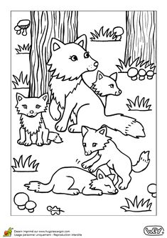Coloriage d'une maman renarde avec ses petits renardeaux dans la forêt Coloring Sheets For Kids, Animal Coloring Pages, Coloring Pages For Kids, Coloring Books, Flower Outline, Forest Theme, Forest Animals, Art Pages, Animals For Kids