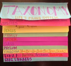 Mrs. Simonson's Class: Taxonomy Foldable Instructions included.  Made for 7th grade science :)