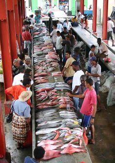 Victoria Market aux Seychelles !    Toutes les saveurs et les couleurs des Seychelles y sont réunis. Épices, poissons, souvenirs...