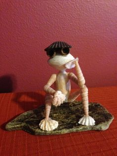 Sitting Seashell Frog by BCSeaShells on Etsy