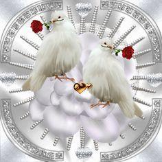 Белые голуби, любовь, анимация