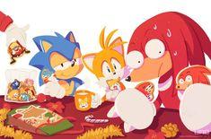 Sonic The Hedgehog, Hedgehog Art, Shadow The Hedgehog, Sonic Funny, Sonic 3, Sonic Fan Art, Sonic Fan Characters, Video Game Characters, Cartoon Games