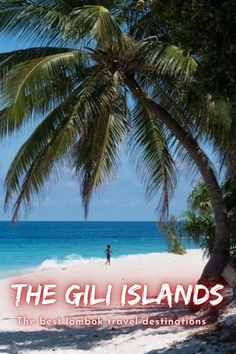 The Gili Islands are a group of 3 tiny islands – Gili Trawangan, Gili Meno and Gili Air – in Indonesia, near the coast of northwest Lombok Island. Characterized by sandy beaches fringed with palm trees, they're known for their coral reefs just offshore. . #lombok #indonesia #travel #traveling #giliislands #island #nature #bucketlist Travel Images, Travel Pictures, Cool Pictures, Wonderful Places, Beautiful Places, Places To Travel, Travel Destinations, Gili Air, Gili Island