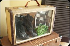 Shadow box display made out of an old suitcase or briefcase. I would use an old picture frame also to make it more attractive Shadow Box Memory, Diy Shadow Box, Craft Projects, Projects To Try, Diy And Crafts, Arts And Crafts, Old Picture Frames, Vintage Suitcases, Vintage Luggage