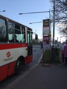 Esto era un autobús. Cada día lo usaba cuando iba a la casa o qué iba a la escuela.