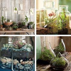 Indoor Plant Decorating Ideas indoorplantdecorationideas