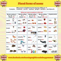 Forum | ________ Learn English | Fluent LandPlural Forms of Nouns | Fluent Land