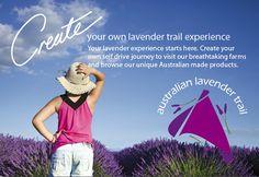 The Australian Lavender Growers' Association