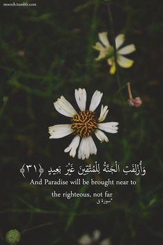 Quran 50:30