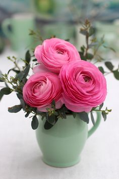 Tiny Blooms - # 27 - Pink Ranunculus and Eucalyptus Beautiful Flowers Pictures, Beautiful Rose Flowers, Happy Flowers, Small Flowers, Pink Flowers, Flower Images, Flower Pictures, Bunch Of Red Roses, Birthday Wishes Flowers