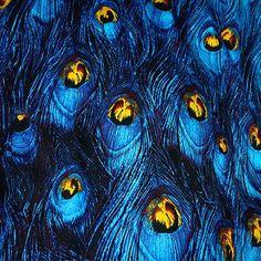 ЛЕВ и ЛИН восстановление Синий павлиньи перья Печать микро упругие атласная Лоскутное Хлопчатобумажная Ткань tissus (1 м) купить на AliExpress