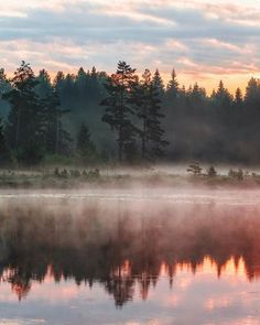 Foggy morning / Karlskoga Sweden /  Christoffer Collin Photography Say Yes To Adventure