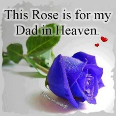This Rose Is For My Dad In Heaven love quotes quotes quote miss you sad death i miss you dad sad quotes heaven in memory beautiful i miss you quotes quotes about missing someone miss you dad quotes about missing loved ones