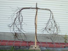 the beginning of a 'pumpkinrot' inspired scarecrow. Basic cross, then begin to zip tie branches on.