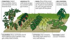 how to plant a garden diagram - - Yahoo Image Search Results