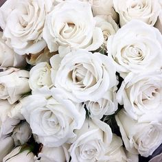 Find images and videos about white, flowers and rose on We Heart It - the app to get lost in what you love. Aesthetic Colors, Aesthetic Photo, Aesthetic Pictures, Aesthetic Roses, Gold Aesthetic, Aesthetic Anime, White Tumblr, White Flowers, Beautiful Flowers