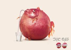 """Mini Babybel """"Riddle"""" Print Ads via Y&R Paris Creative Advertising, Print Advertising, Advertising Campaign, Print Ads, Marketing And Advertising, Photomontage, Ad Of The World, Funny Ads, Hilarious Stuff"""
