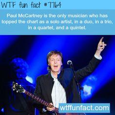 Paul McCarthy facts - WTF fun fact
