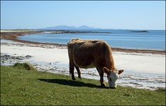 Bairanald Beach, North Uist with the mountains of South Uist in background...