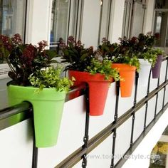small balcony garden ideas would like to use this idea only perhaps with cloth pots.. or maybe rigging pots together to hand like this... Balcony Herb Gardens, Small Balcony Garden, Hot Tub Garden, Backyard Garden Landscape, Small Backyard Gardens, Modern Backyard, Balcony Ideas, Small Balconies, Pergola Ideas