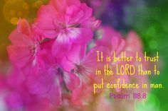 It is better to trust in the Lord than to put confidence in man.  It is better to trust in the Lord than to put confidence in princes. (Psalm 118:8,9) Amen! Man will always let us down - God never will.