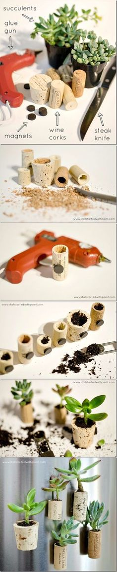 How to make wine cork magnet planters with succulents, magnets, wine corks. Full tutorial with pictures on how to make wine cork magnet planters for fridge. Craft Projects, Projects To Try, Craft Ideas, Do It Yourself Inspiration, Wine Cork Crafts, Ideias Diy, Deco Floral, Diy Planters, Succulent Planters