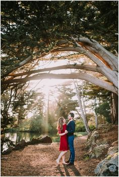 A Golden Gate Park engagement session in San Francisco, CA || Photography by Shelly Anderson Photography || www.shellyandersonphotography.com