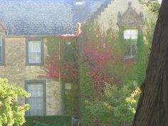 Overnewton, a Scottish Baronial Castle - Keilor, Melbourne | Flickr - Photo Sharing!