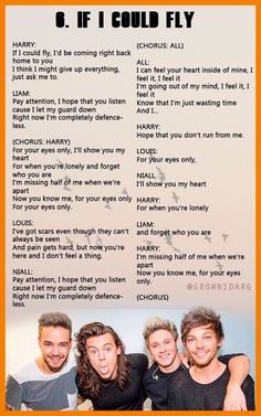 If a could fly - One Direction One Direction Lyrics, One Direction Memes, One Direction Pictures, I Love One Direction, Fly Lyrics, Music Lyrics, 1d Quotes, Lyric Quotes, Best Song Ever