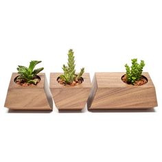 Boxcar Succulent Planters Solid Walnut by RevolutionDH on Etsy