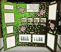 8 Best Science Fair Display Board Images Science Fair Display