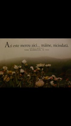 azi ! Toni Morrison, Deep Words, Quotes, Life, Beautiful, Instagram, War, Change, Impressionism
