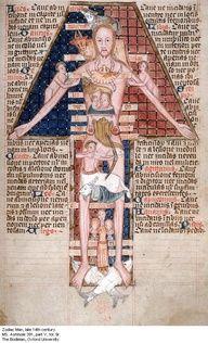 14th Century medidal Zodiac man