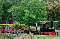 Le Petit Train - Le Jardin d'Acclimatation #green