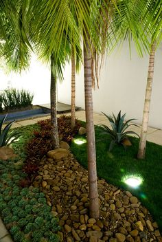 Garden & Landscaping Ideas <3