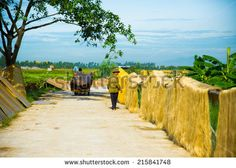 HANOI, VIETNAM - JUNE 10, 2014: arrowroot vermicelli- a special Vietnamese noodles are being dried on bamboo fences going along the roads in Cu Da Village, Hanoi, Vietnam  - stock photo