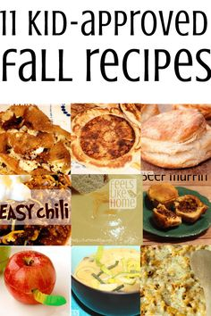 These kid-approved recipes for lunch, dinner, and snack are perfect for the chill of fall. Including apples, biscuits, pancakes, and lots of soups and stews, they're going to please everyone in your house, even the picky eaters!